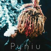 Pyniu333